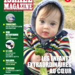Cover236.indd